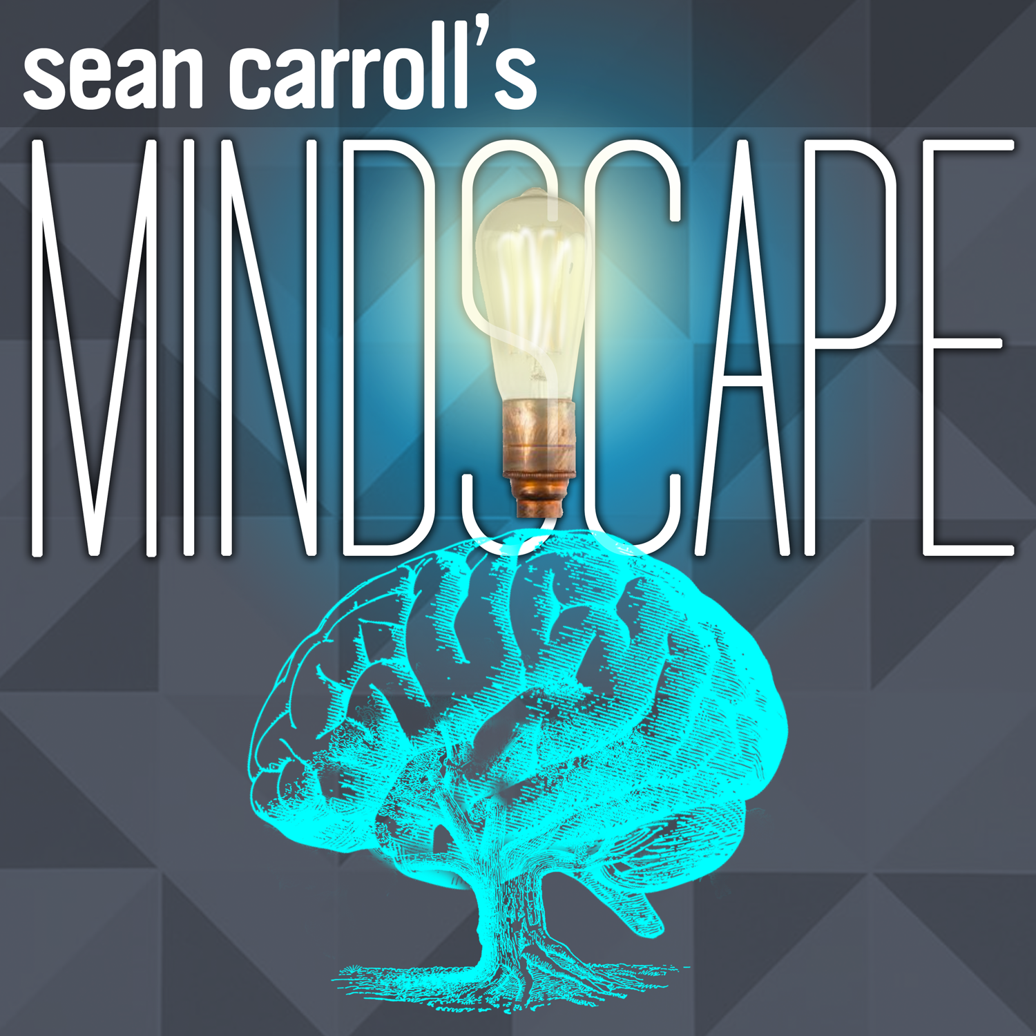 Welcome to the Mindscape Podcast! – Sean Carroll